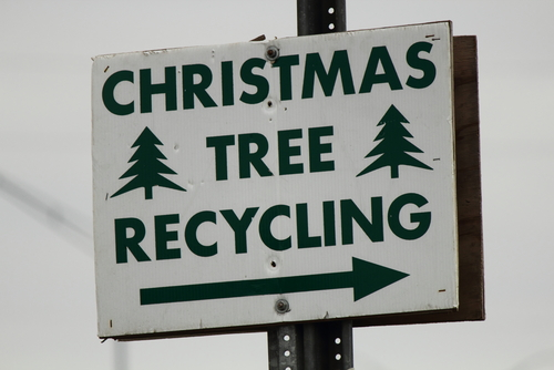 Black and white Christmas tree recycling sign